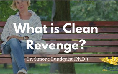What is Clean Revenge?